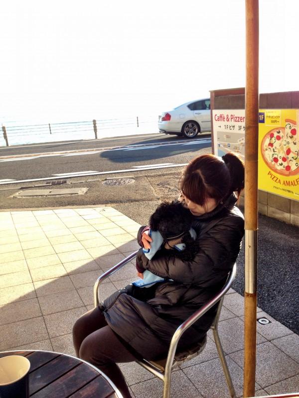 アマルフィー・ピザ/寝るトイプー