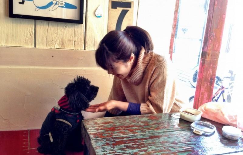 DOUBLE DOORS藤沢/犬の食事