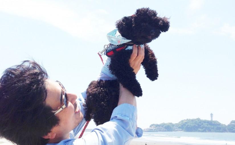 愛犬と江ノ島