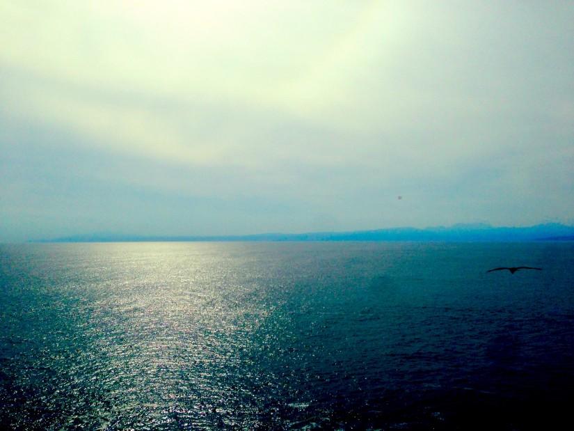 富士見亭/相模湾