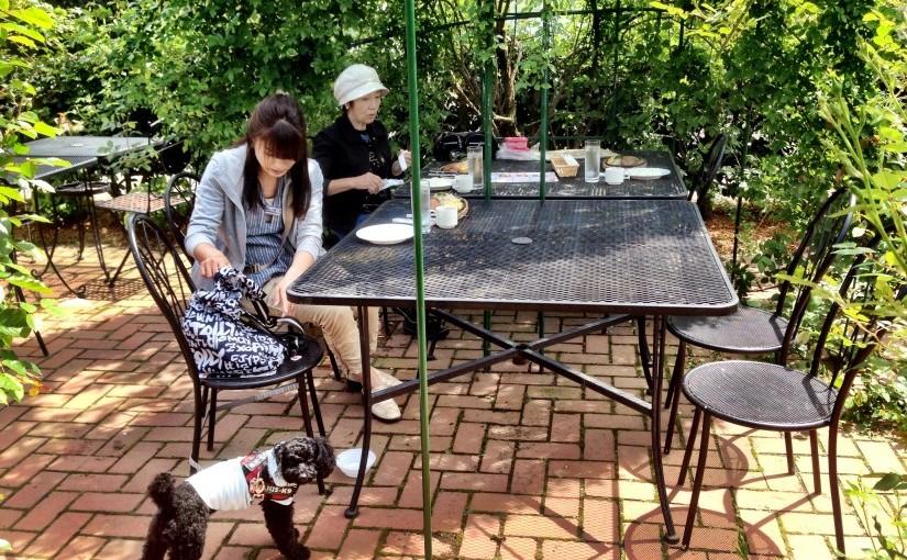 湘南の犬と入れる<span>カフェ&レストラン</span><span>″ハンバーグ&ステーキ栗の里 厚木店″</span>
