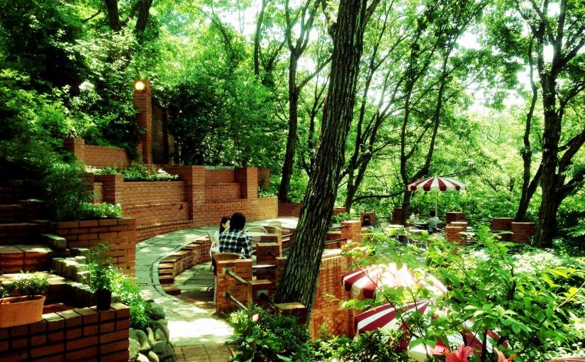 湘南の犬と入れる<span>カフェ&レストラン</span><span>″鎌倉 樹(いつき)ガーデン″</span>