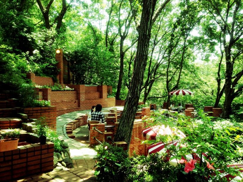 樹ガーデン/外観
