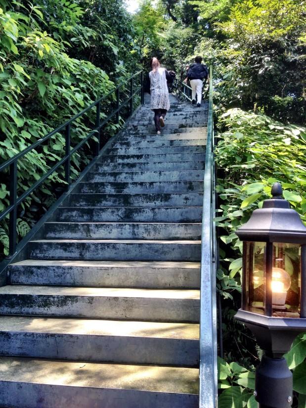 樹ガーデン/天空への階段
