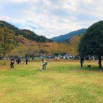 yadoriki/中型・小型犬エリア