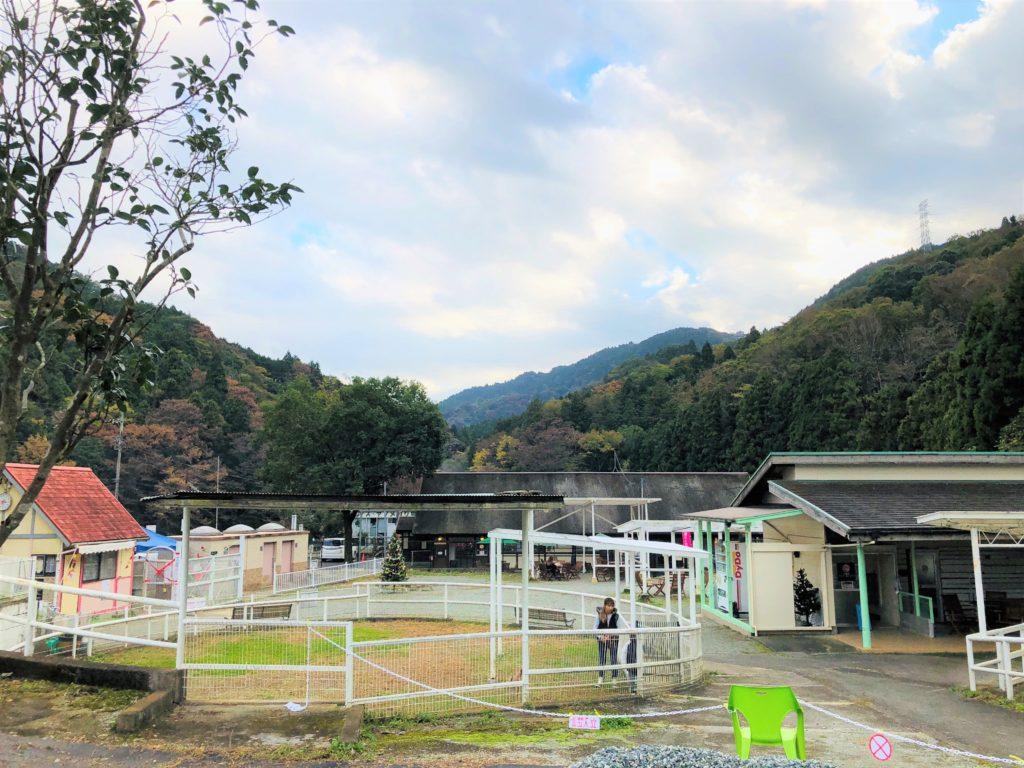 yadoriki/ビギナーエリア